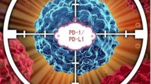 PD-1抗体治疗效果预测的标志物PD-L1到底行不行?