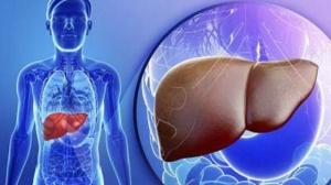 PD-1抑制剂肝癌最新数据,疗效显著有望冲击一线用药