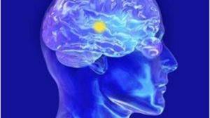 脑转移的肿瘤,PD-1就不能用了?或许,未必!