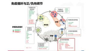 "【HapOnco-WCLC 2016】靶向治疗联合免疫治疗发生""宇宙爆炸""?又面临怎样的""后遗症""?(六)"