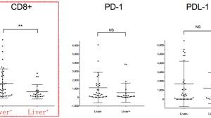 肿瘤患者发生肝转移,PD-1抗体有效率降一半