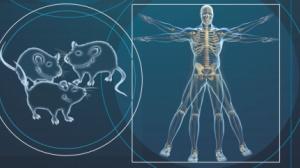 双靶向,连环杀:肿瘤消失3年