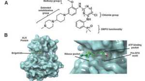 肺癌重磅新药Brigatinib:肿瘤控制率86%