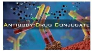 控制率70%:全新抗癌药IMMU-132挑战多种难治肿瘤