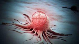 惊喜!PD-1联合化疗,肿瘤控制率92%