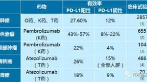 免疫治疗与PD-L1检测:一文详解