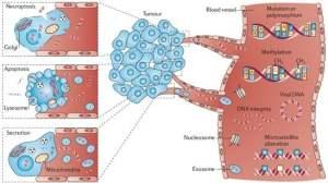 血液基因检测:阳性率89%