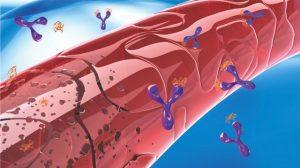 抗血管生成药:PD1联合治疗的强大搭档