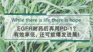 权威总结:EGFR耐药后再用PD-1,有效率低,还可能爆发进展