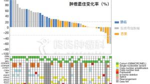 CDK4/6抑制剂:生存期倍增,还增敏PD1