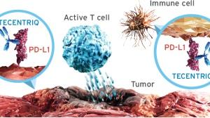 PD1一线治疗晚期癌症:独家汇总与展望