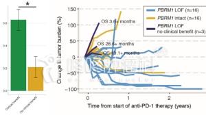 重磅喜讯:PBRM1突变病友,PD1神效