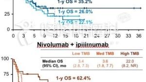 三十年来没有新药的小细胞肺癌,被PD-1拿下了!