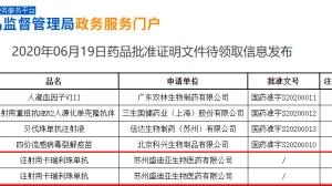 大国重器! 国产PD-1抑制剂首次获批肺癌、食管癌, 或将彻底改变中国癌症治疗格局