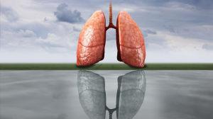 人小鬼大:小细胞肺癌的全线治疗策略