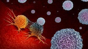 """癌症耐药进化的机制找到了!狡诈的癌细胞学会了""""融合术"""",耐药性也能代代相传!"""
